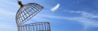 4 października Uniregistry uwolni 10 milionów domen