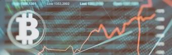 Ilu domainerów inwestuje w kryptowaluty?