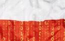 W rejestrze .pl ubyło 127 tys. nazw. Raport NASK za 2017 r.