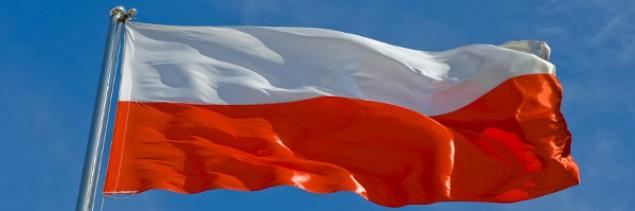 Polskie nazwy IDN dostępne w .co