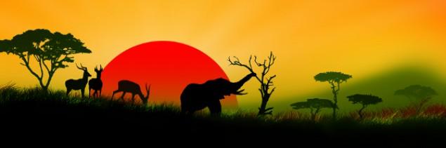 Końcówka .xyz zyskuje na popularności w Afryce