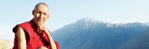 Domena .guru ma już ponad 50 tys. rejestracji