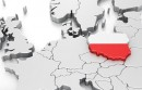 Dramatycznie niski wskaźnik odnowień domen .pl na tle średniej europejskiej