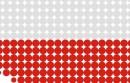 Domena .pl doczekała się swojego logo