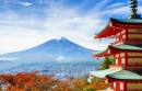W domenie .jp zarejestrowano ponad 1,5 miliona nazw