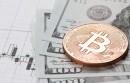 Sensacyjna sprzedaż! 500 bitcoinów za BTB.com