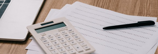 Ilu domainerów płaci podatki?