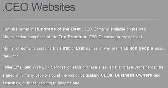 ceo websites jpg